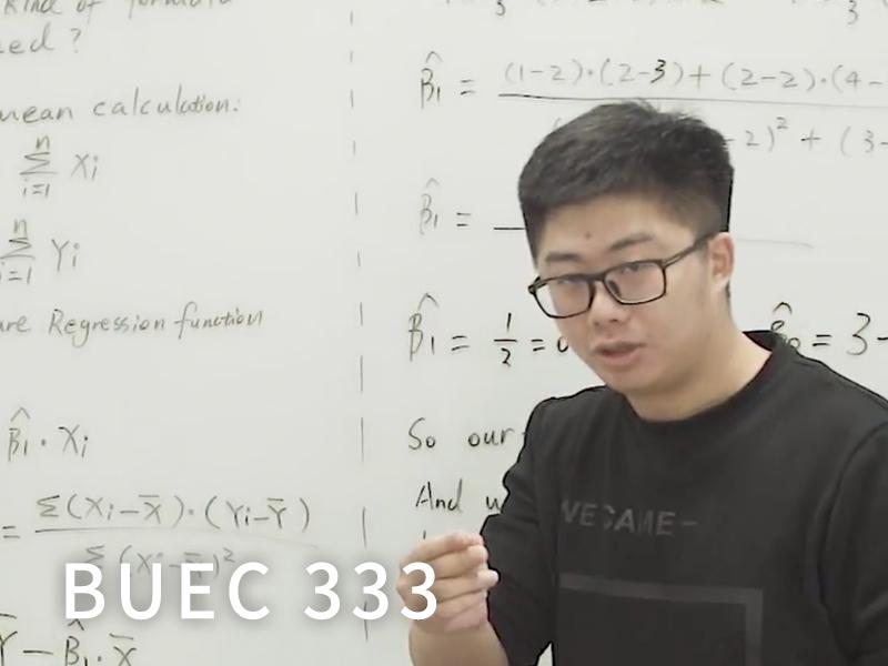 BUEC 333
